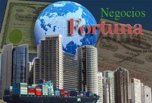 Fortuna Negocios