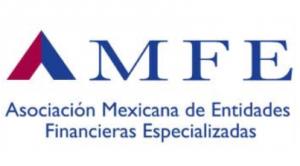 AMFE logo